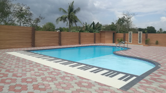The Grand Piano Designed Pool!